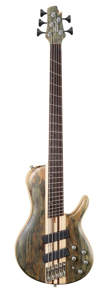 Cort Artisan A5 Plus SCMS  Open Pore Trans Grey